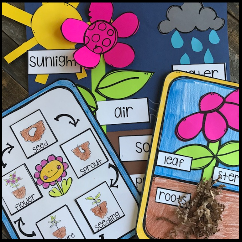 Plant Activities, Writing Crafts, Science Lessons and Centers for Kindergarten (20+)