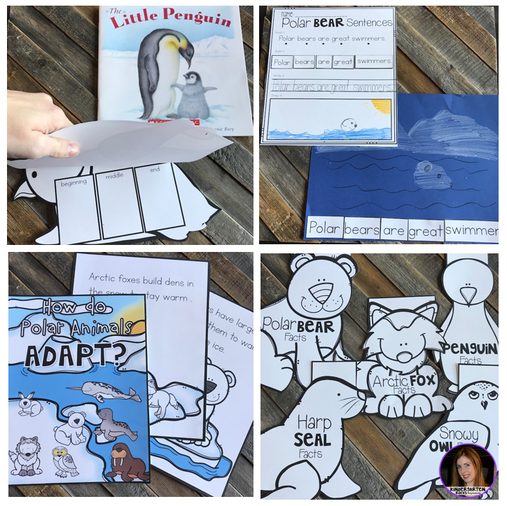 Arctic and Polar Animal {20+ Activities} for Kindergarten and First Grade