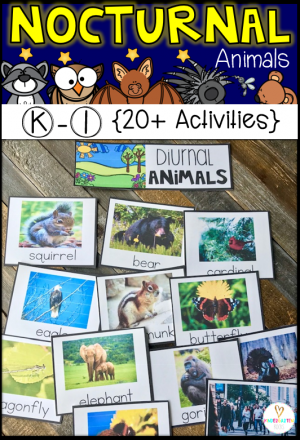 Are you looking for a factual science unit about nocturnal animals that will tie  into your next generation life science unit standards?  Our nocturnal animal unit looks closer at animal needs and the adaptions used to help them survive.