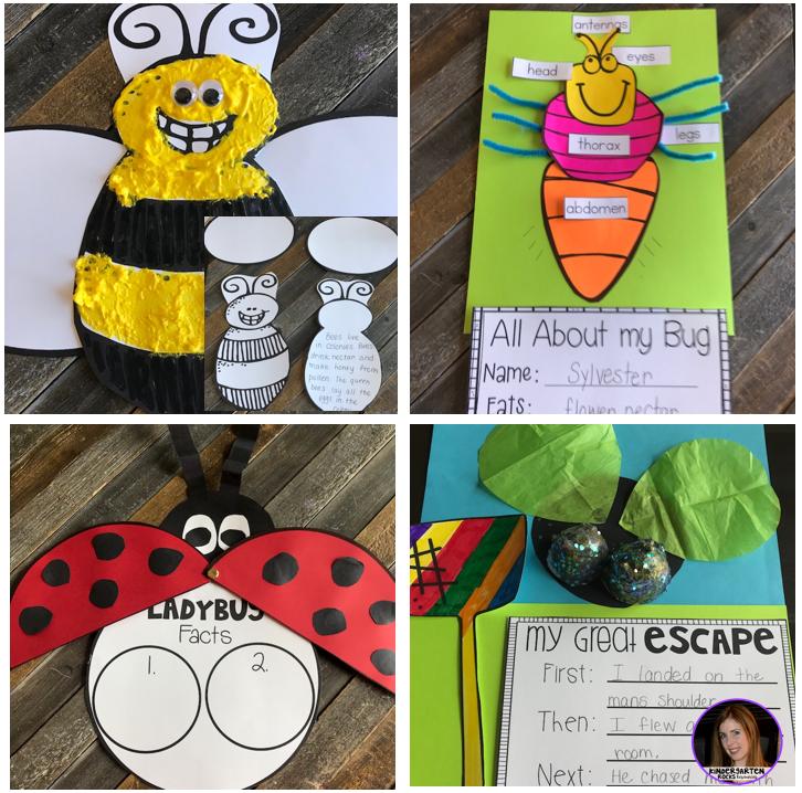 Insects {20+ Activities} for Kindergarten