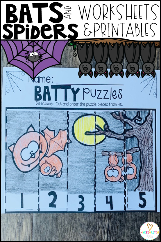 Bat and Spider Activities