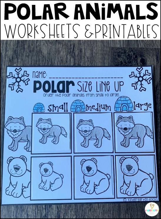Polar Animals Size Line UP