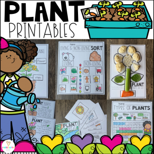 Plant Worksheets