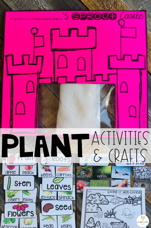 Spring is right around the corner!  Soon our environment will bloom.  Plants is one of our first units in spring.  We love using a variety of plant activities and crafts to make this a memorable unit!  This unit has enough materials and keeps student interest for about two weeks. We spend several days learning about plant parts and living and non-living things#plants #kindergarten