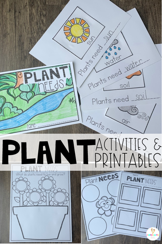 Plant activities are the perfect segway to spring!  If you are looking for print and go science-based printables for your plant unit then you will love Plant Worksheets are perfect for you! Plant needs reproducible interactive book and printables are just a few of the included activities. #plants #kindergarten #worksheets
