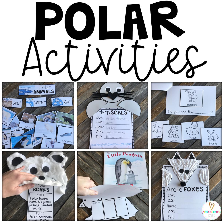Polar Animal Activities